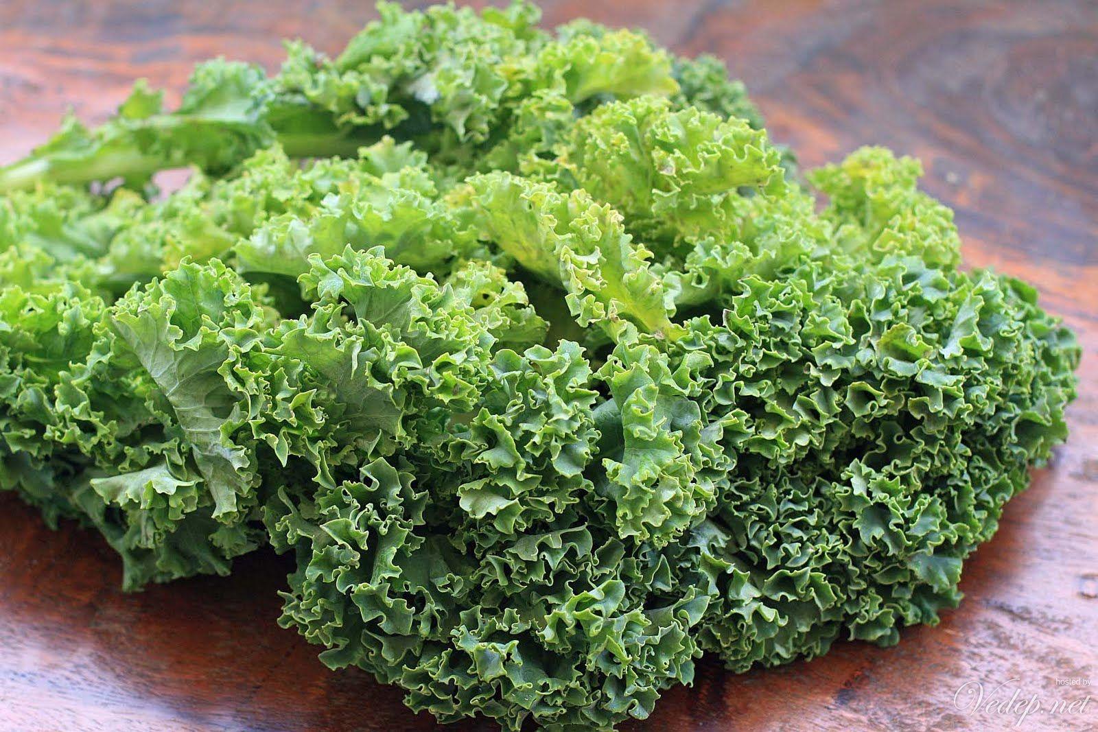 Rau cải xoăn giàu vitamin K