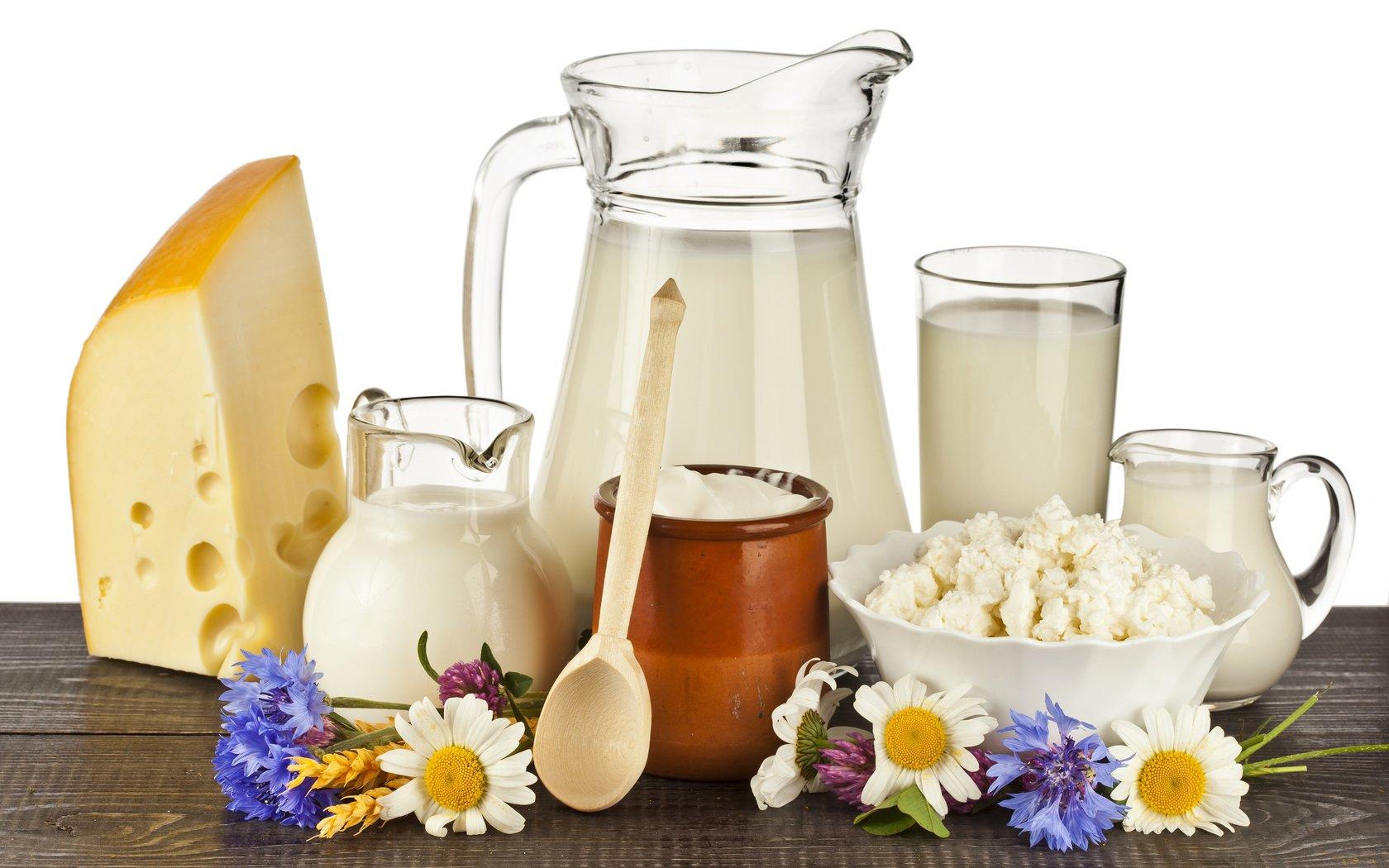 Những thực phẩm làm từ sữa