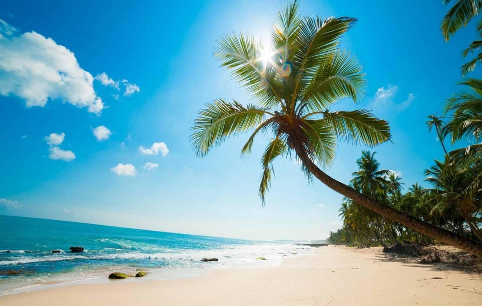 Phú Quốc là hòn đảo lớn nhất Việt Nam