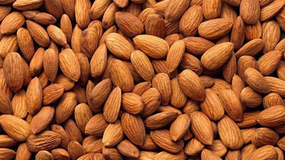 Những thực phẩm giàu vitamin E cho trẻ nhỏ